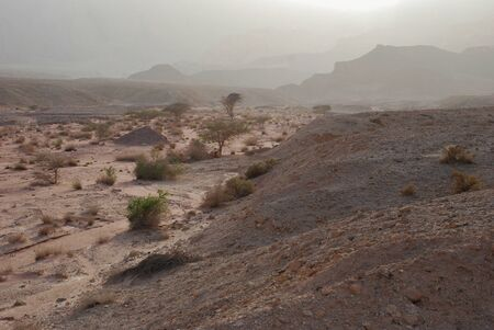 arava: Timna national geological park (Israel) The Mushroom and the half sandstones in the Negev desert