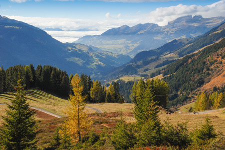 View on the Alps in the outskirts of Les Diablerets, Switzerland. Autumn mountain landscape. Snow-capped mountains and alpine meadows green. Stock Photo