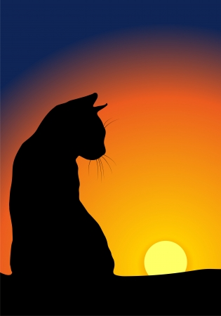 Cats silhouette against sunset background