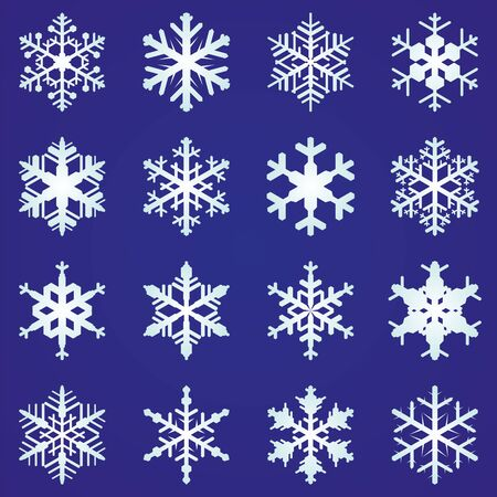 Set of 16 vector snowflakes
