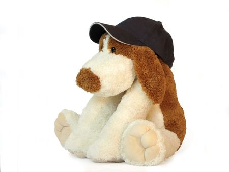 baseball stuff: white and brown isolated toy dog in baseball cap Stock Photo