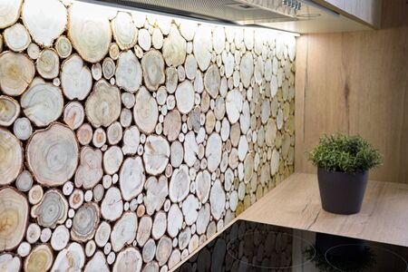 Modern kitchen interior with hob and surface behind the countertop decorated with wall cross section of tree trunks of cut tree logs, trunks placed together for interior decoration Фото со стока
