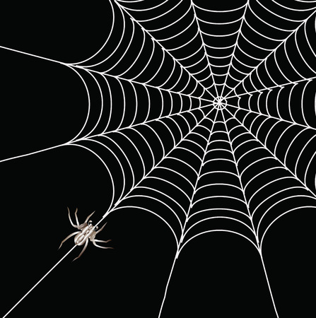spider cartoon: Spider and a web on a black background Illustration