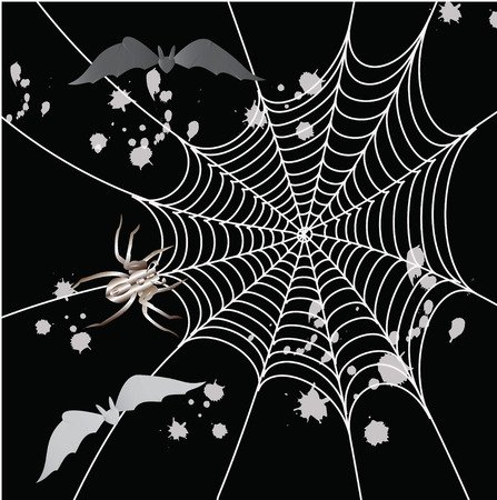 crawlies: Spider, bat and a web on a black background