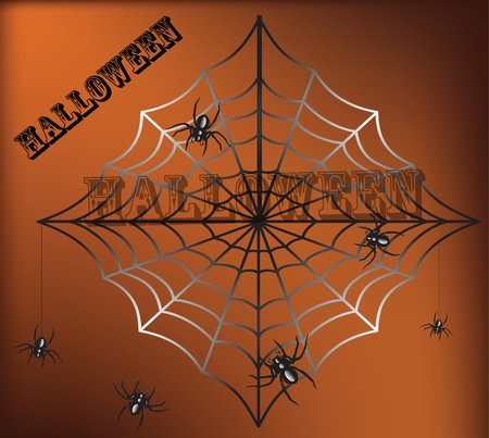 crawlies: Spider and a web on a black background Illustration