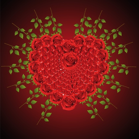 Heart from roses in which is a lot of roses Vector
