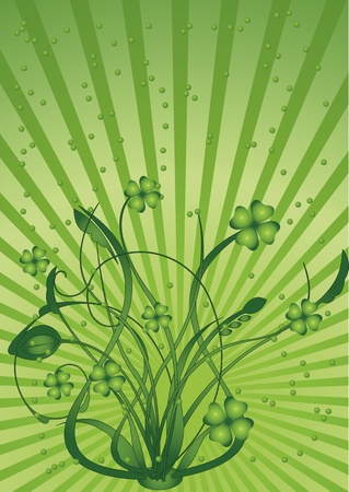 chinks: Green clover in sun beams. St. Patricks Day Illustration