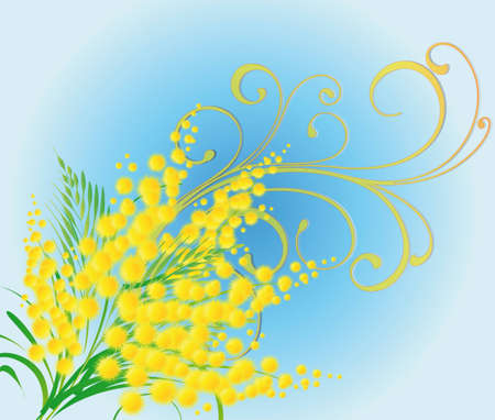 Spring illustration with a mimosa Vector