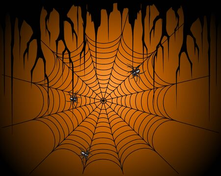 creeping: The awful spiders creeping on a web