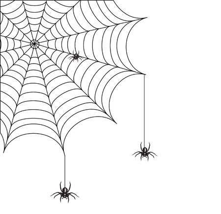awful: The awful spiders creeping on a web