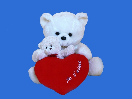 Teddy bear in love and baby with red heart on blue background photo