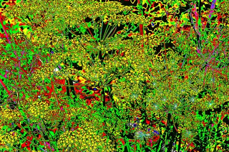 Psychedelic multicolored plant composition
