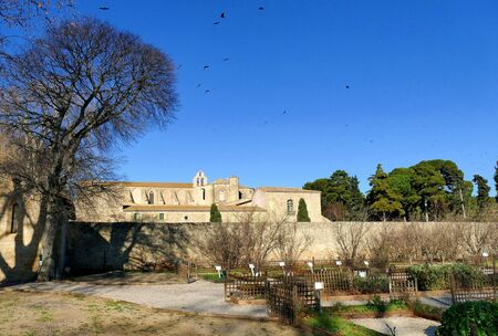 View of the Abbey Sainte-Marie of Valmagne from the garden of medicinal plants Stock Photo