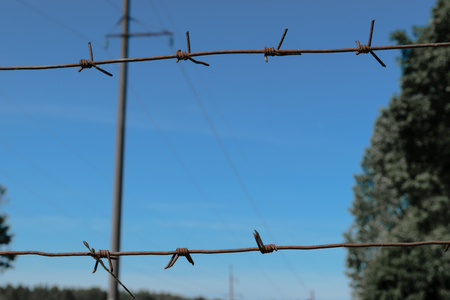 Rusty barbed wire fence in clear blue sky background with tree and electric pole Imagens