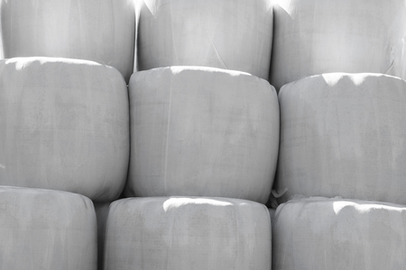 Large silage bales wrapped in white plastic background Stock Photo