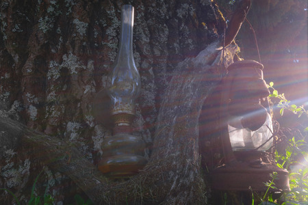 Old, broken and rusty oil lamps hanging near the old tree trunk on branch and illuminated by summer evening sun light beams