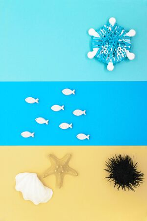 Abstract beach composition from colorful paper, wooden white fishes, white seashell, sea star, black sea urchin and white ship helms as the sun with copy space