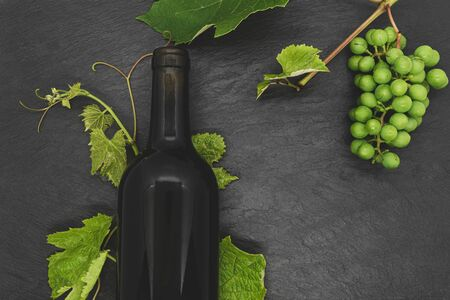 Composition of black and blank wine bottle with young grape twig with fresh green leaves and unripe grapes on black stone background with copy space