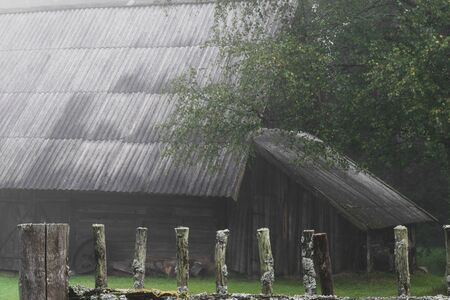 Very old rural barn during early morning fog in autumn. In the background visible birch tree, river and old rural fence with spider webs. Very mysterious and frightening atmosphere 写真素材