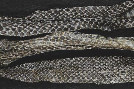 Part of old dropped grass snake (lot. Natrix natrix, ringed snake or water snake) skins on black stone background surface