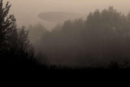 Abstract composition of alien spaceship over foggy forest and extraterrestrial figurine silhouettes in meadow during dark night. Vintage grunge filter color style with noise and compression artifacts