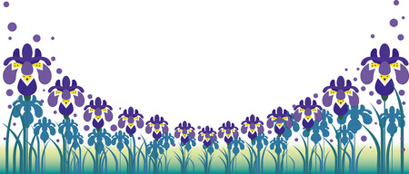 Iris background
