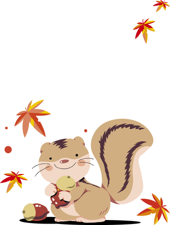Squirre Çizim