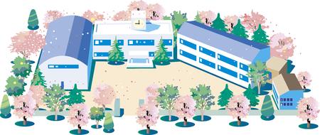 Cherry Blossom School