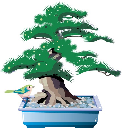 bonsai illustration Stock Illustratie