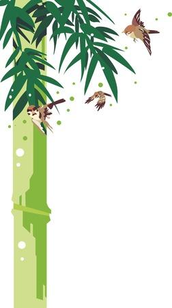 Sparrow and bamboo Illusztráció