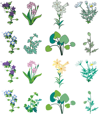 Grass and flower cut collection