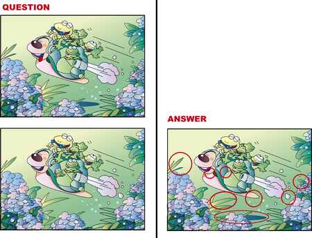 Mistake picture  search  Quiz frog  and snail