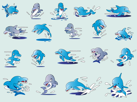 Collection of illustration of dolphin