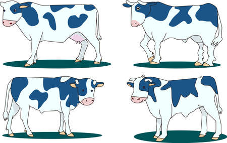 The cow is the 2021 zodiac