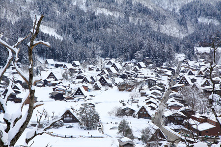 gassho zukuri: Top view of Shirakawago in the winter of Japan