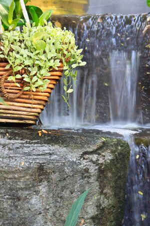 bramble: Bramble in basket with waterfall background Stock Photo