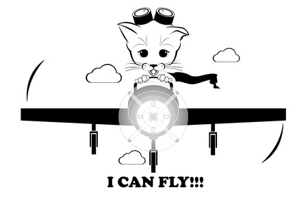 whisker characters: Boso, calm and happy kitten, darling of fortune. He is flying on plane and rapture is on his muzzle. Even kittens can fly. Black vector illustration isolated on white background.