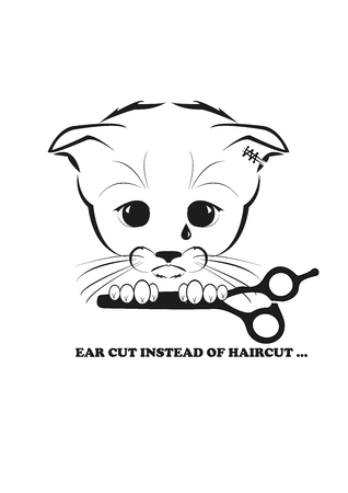tried: Totono, saddest kitten in the world. He tried to make a haircut, but got an ear cut instead. And all sadness of the world is in his eyes. Black vector illustration isolated on white background. Illustration
