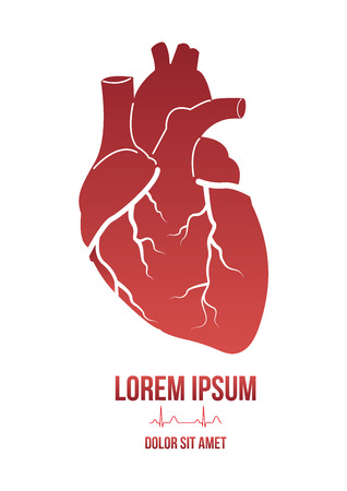 be the identity: Hearth design concept with lorem ipsum dummy text under it and human heart cardiogram. Can be used by clinics for  business identity, print products, page and web decor or other design. Illustration