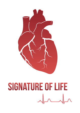 hand beats: Signature of life design concept - heart with SIGNATURE OF LIFE text and cardiogram line that actually symbolizes signature. Can be used by clinics for  print products, page and web decor. Illustration