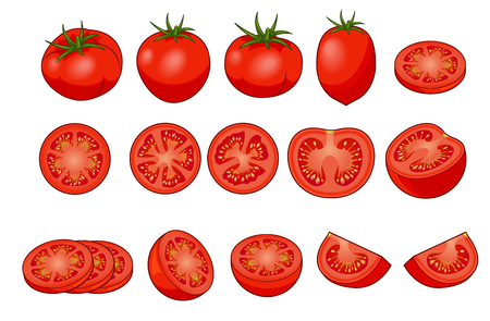 Set of fresh red tomatos with shadows and highlights isolated on white background top view. Whole, slice, half, quarter.