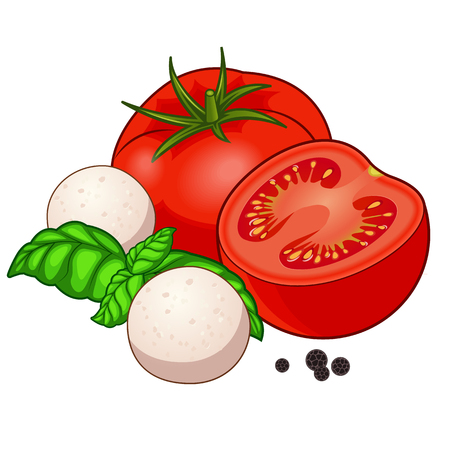 Fresh red tomato full and half with mozzarella baby balls, green basil and black pepper with shadows and highlights isolated on white background isometric front view.