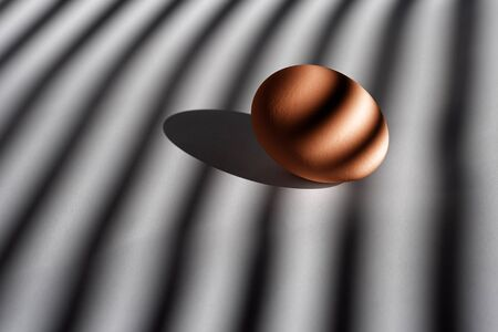 Single brown chicken egg on white background with shadows from the window blinds. Streaks of morning sunlight from louvers