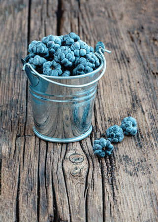 Fresh blackberries or dewberries in small mini metal bucket on wooden background. Season of forest berries. Rustic style. Vertical orientation. Copy space