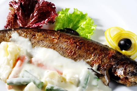 Fish Plate Served with Vegetables Sauce and Salad Leaves Stock Photo - 4085970