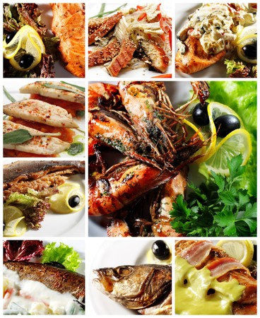 Collection of Seafood Photo Stock Photo - 4253423