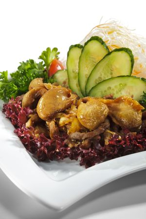 Japanese Cuisine - Pork with Onion and Mushrooms. Garnished with Salad, Fresh Vegetables and Parsley photo