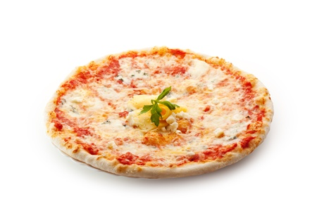 Pizza made with Mozzarella, Parmesan Cheese and Tomato Sauce photo