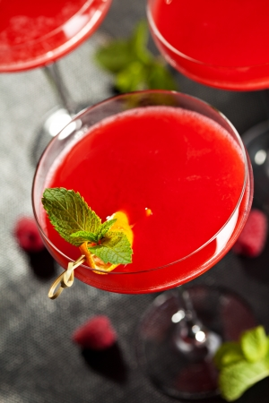 Red Alcoholic Cocktail with Raspberry Gin  Garnished with Fresh Mint Leaves and Lemon Citron photo