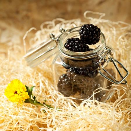 Blackberry Pot photo